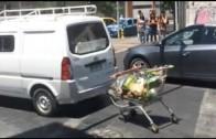 Auto con carro de supermercado acoplado || ViralesChile
