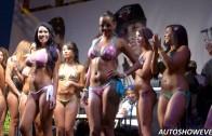 Extreme Autofest Bikini contest Anaheim 2014 Part 8