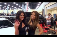 HOT CARS & HOT GIRLS The Perfect Combination at Miami Wekfest car show