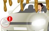 In auto con Guido: ecco i segreti della Manutenzione dell'Auto