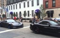 Lamborghini avantadors in car show