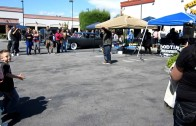 The Car Show in Lakewood, CA