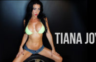 tiana_joy_index
