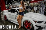 Highlights of the L.A. Dub Show 2016